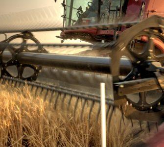 Header harvesting grain