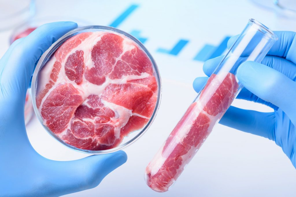 US lab-grown meat laws: A free kick for fake meat